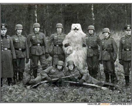 Wehrmacht (biały miś polarny)